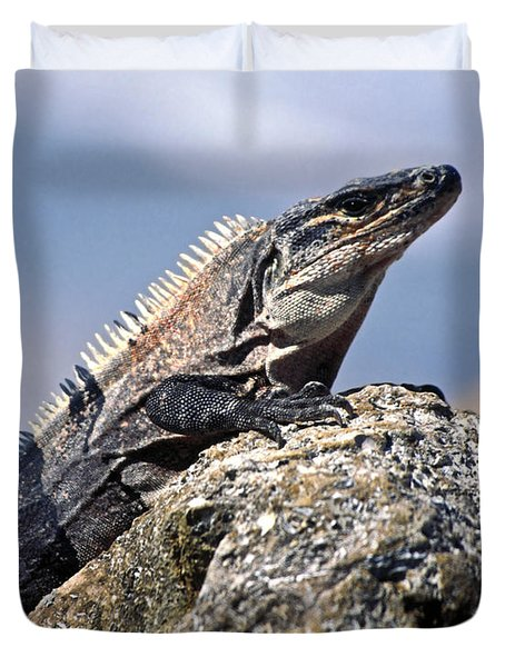 Iguana Duvet Cover by Sally Weigand