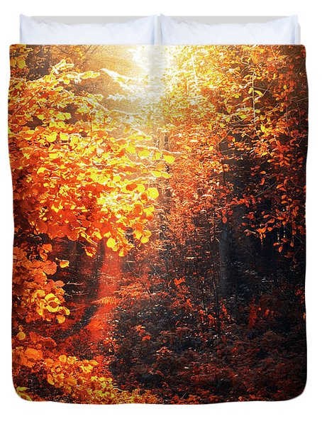 Illuminated Forest Duvet Cover by Wim Lanclus