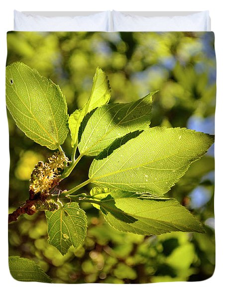 Duvet Cover featuring the photograph Illuminated Leaves by Ron Cline