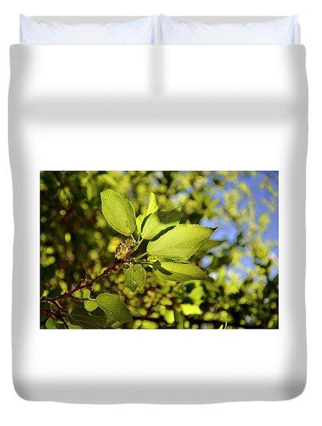 Illuminated Leaves Duvet Cover
