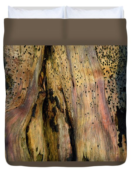Illuminated Stump 02 Duvet Cover by Bruce Gourley