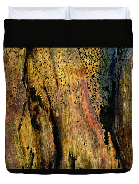 Illuminated Stump Duvet Cover by Bruce Gourley