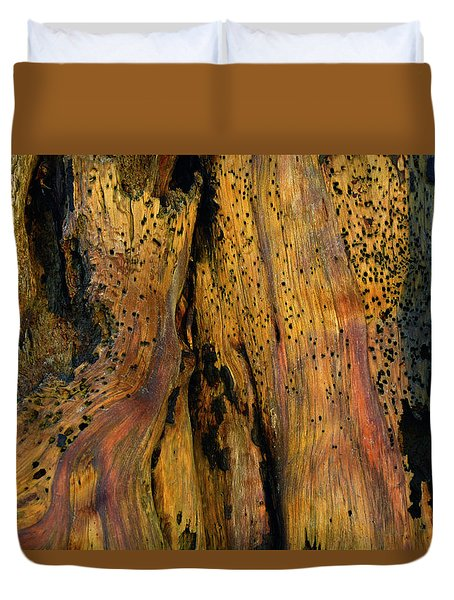 Illuminated Stump With Peeking Crab Duvet Cover by Bruce Gourley