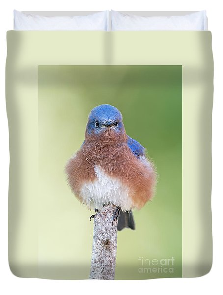 Duvet Cover featuring the photograph I May Be Fluffy But I'm No Powder Puff by Bonnie Barry