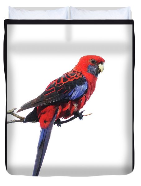 Immaculate Portrait Of Crimson Rosella Duvet Cover