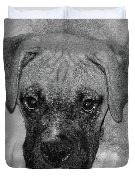 Impawsible Duvet Cover by DigiArt Diaries by Vicky B Fuller