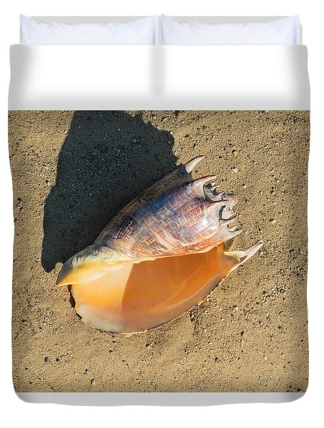 Duvet Cover featuring the photograph Imperial Volute Seashell by Frank Wilson