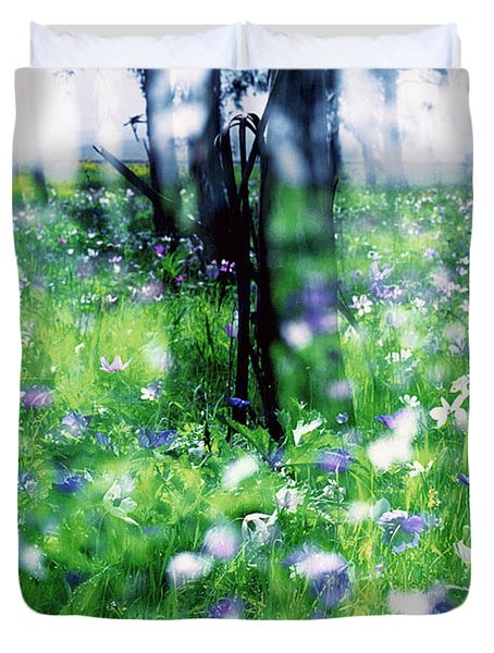 Impressionistic Photography At Meggido 1 Duvet Cover