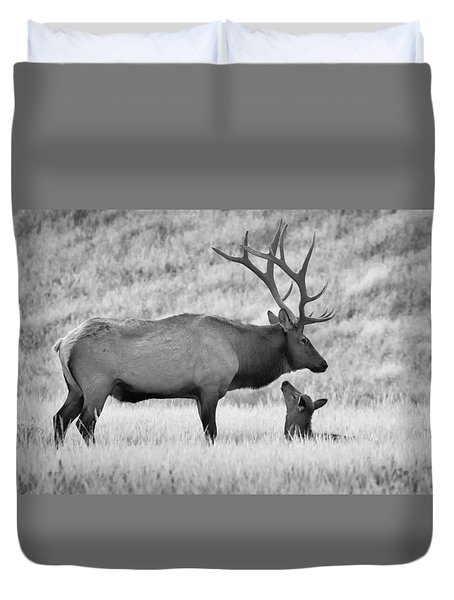 Duvet Cover featuring the photograph In Charge by Kelly Marquardt