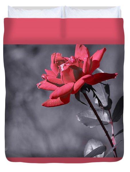 In Full Bloom 2 Duvet Cover by Warren Thompson