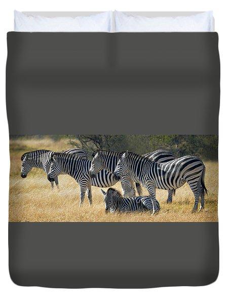 In Line Zebras Duvet Cover by Joe Bonita