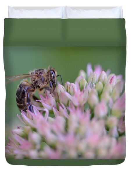 In Search Of Nectar Duvet Cover