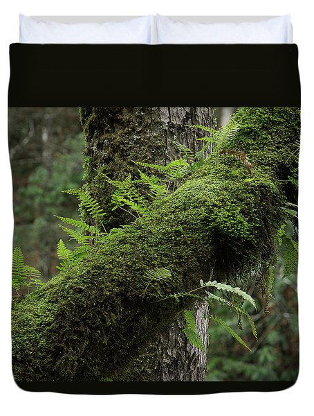 Duvet Cover featuring the photograph In The Cool Of The Forest by Mike Eingle