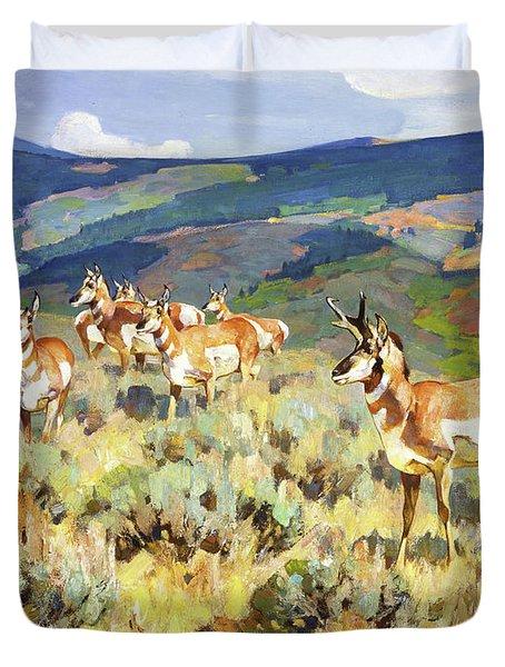 In The Foothills - Antelope Duvet Cover