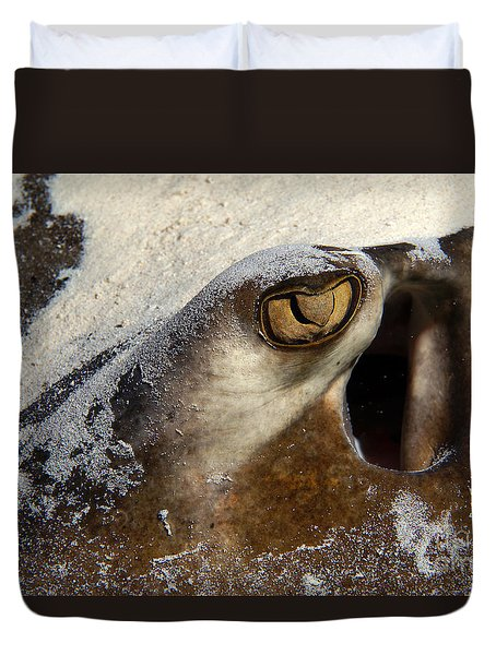 In The Sand Duvet Cover by Aaron Whittemore