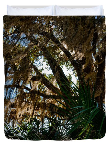 In The Shade Of A Florida Oak Duvet Cover by Christopher Holmes