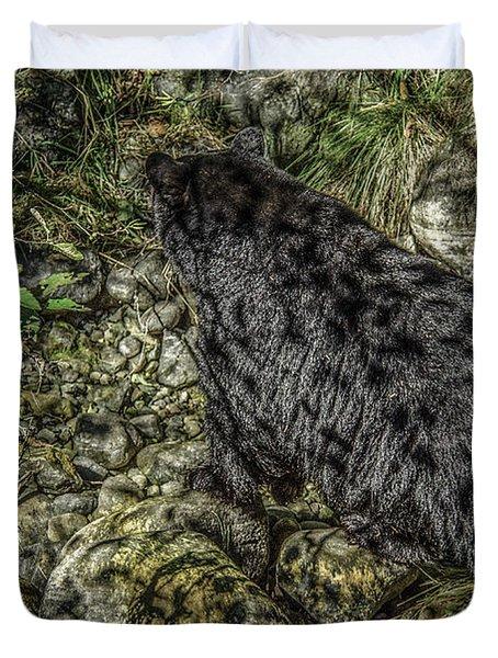 In The Shadows Black Bear Duvet Cover