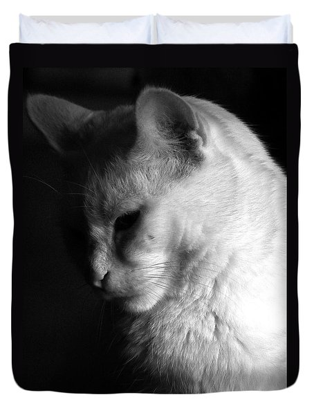 In The Shadows Duvet Cover by Bob Orsillo