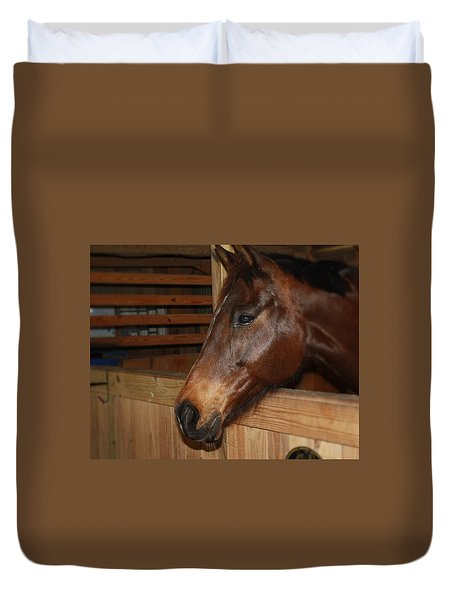 In The Stall Duvet Cover by Roena King