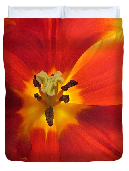 Incandescence Duvet Cover by Jessica Jenney