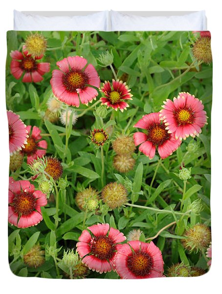 Duvet Cover featuring the photograph Indian Blanket Flowers by Bradford Martin