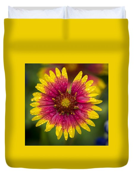 Indian Blanket Duvet Cover