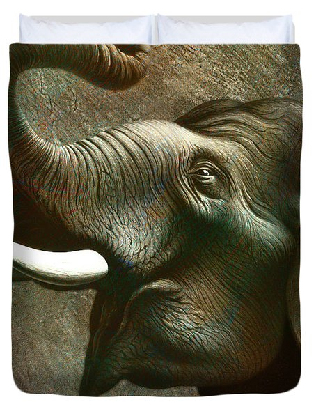 Indian Elephant 3 Duvet Cover by Jerry LoFaro