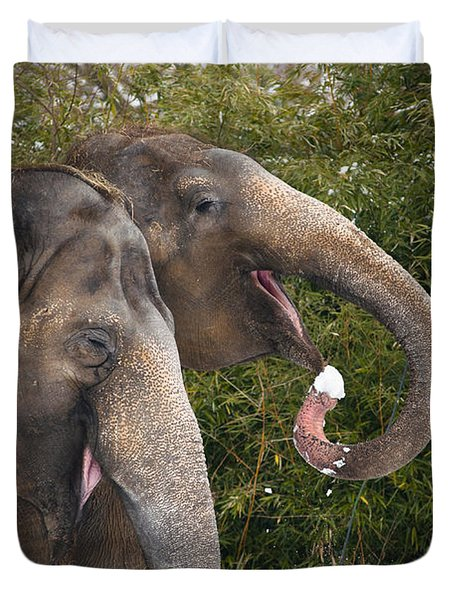 Indian Elephants Eating Snow Duvet Cover