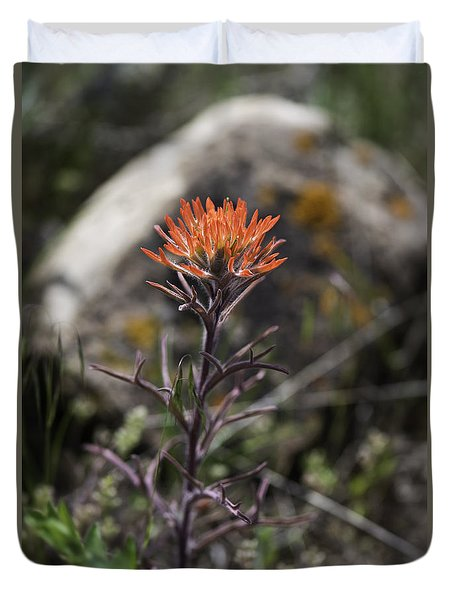 Indian Paintbrush 7 Duvet Cover