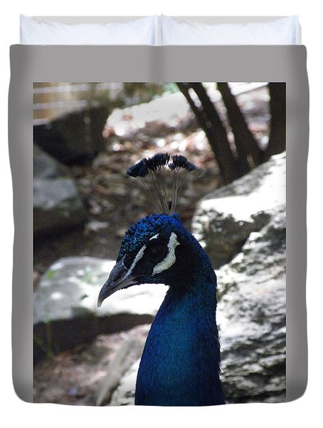 Indian Peafowl Duvet Cover