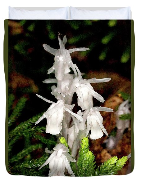 Duvet Cover featuring the photograph Indian Pipes On Club Moss by Meta Gatschenberger