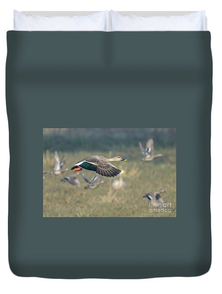 Indian Spot-billed Duck 01 Duvet Cover