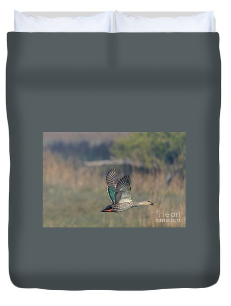 Indian Spot-billed Duck 03 Duvet Cover