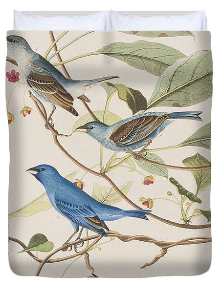 Indigo Bird Duvet Cover by John James Audubon