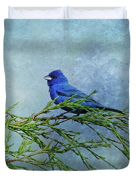 Indigo Bunting On Pine Duvet Cover