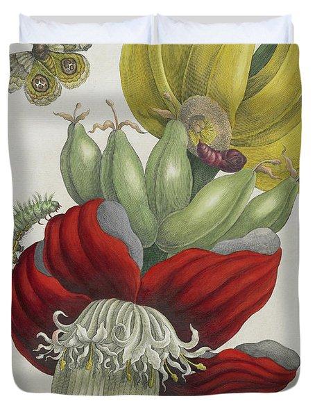 Inflorescence Of Banana, 1705 Duvet Cover