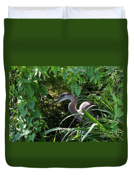 Injure Blue Heron Duvet Cover by Donna Brown