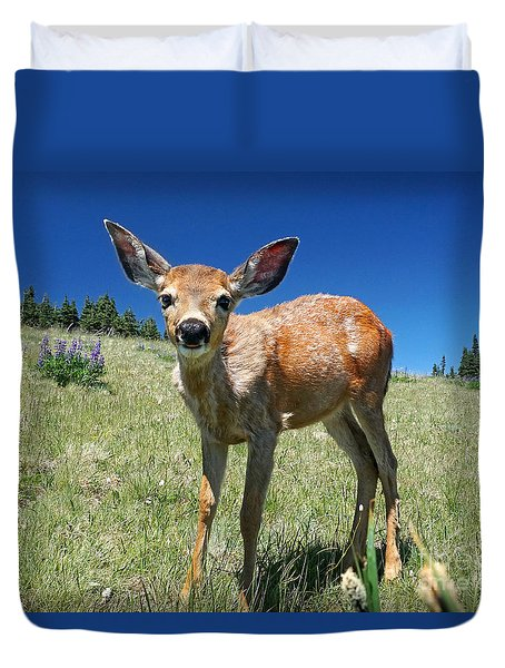 Inquisitive Blacktail Fawn Duvet Cover