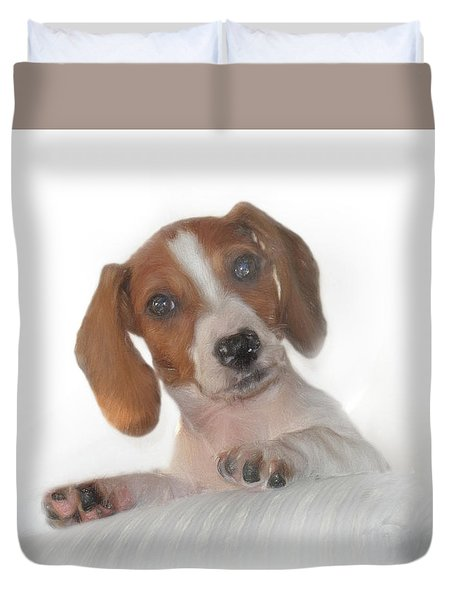 Duvet Cover featuring the photograph Inquisitive Dachshund by David and Carol Kelly