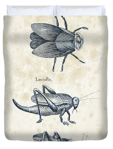 Insects - 1792 - 08 Duvet Cover by Aged Pixel