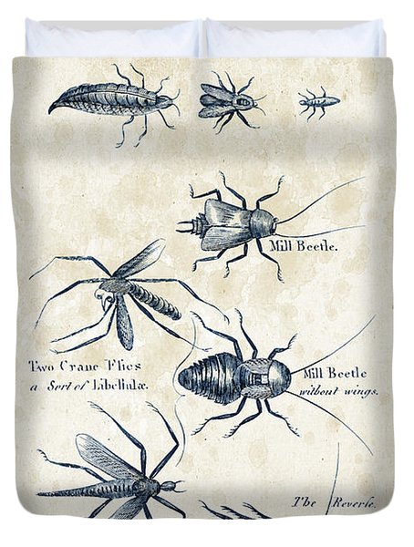 Insects - 1792 - 10 Duvet Cover by Aged Pixel