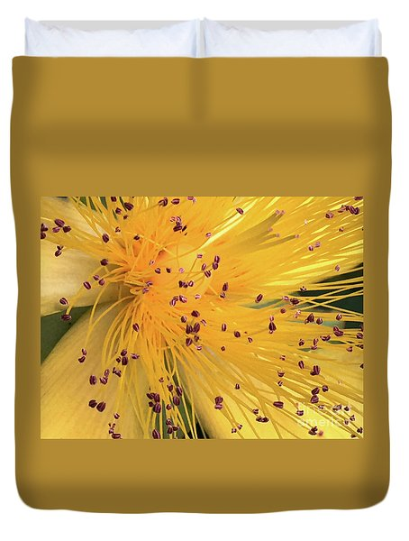 Inside A Flower - Favorite Of The Bees Duvet Cover