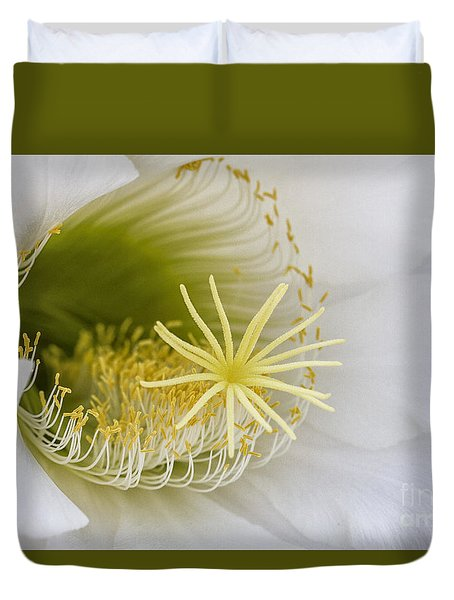 Inside Of An Echinopsis  Duvet Cover by Ruth Jolly