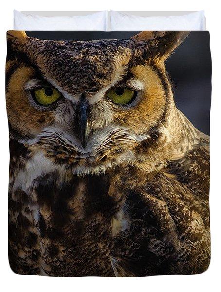 Intense Owl Duvet Cover