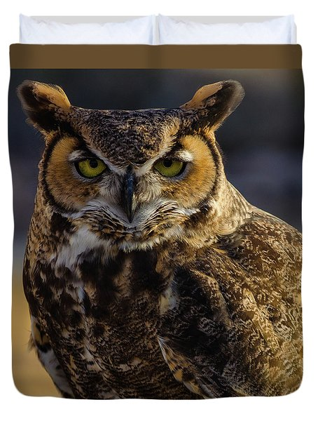 Intense Owl Duvet Cover