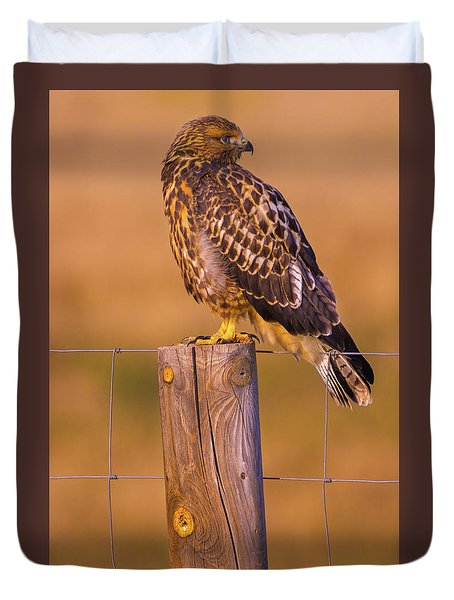 Intermediate Morph Swainson's Hawk Duvet Cover