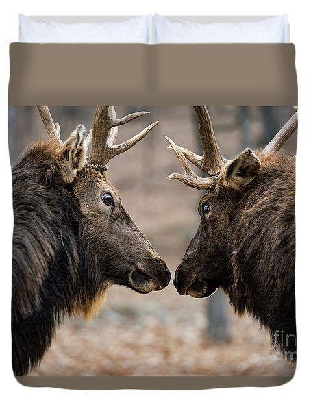 Duvet Cover featuring the photograph Intimidation by Andrea Silies