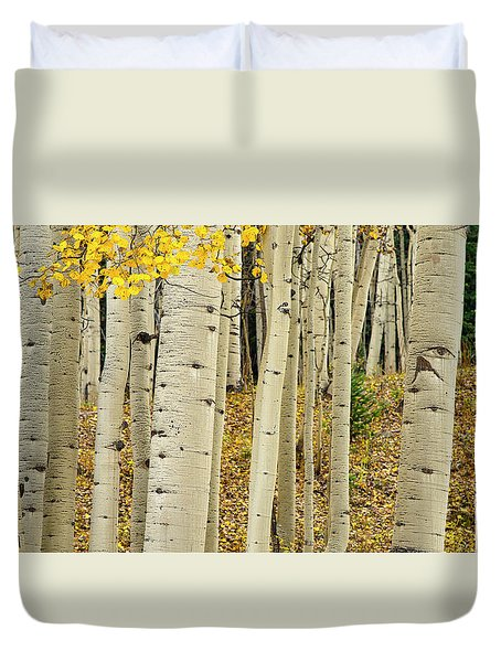 Duvet Cover featuring the photograph Into The Forest by Gary Lengyel