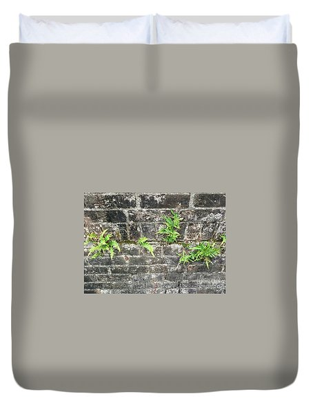 Intrepid Ferns Duvet Cover by Kim Nelson