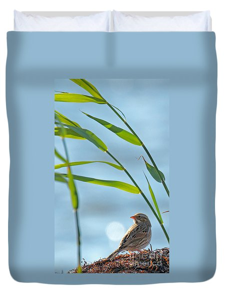 Ipswich Sparrow Duvet Cover